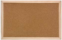 Pin Cork Board